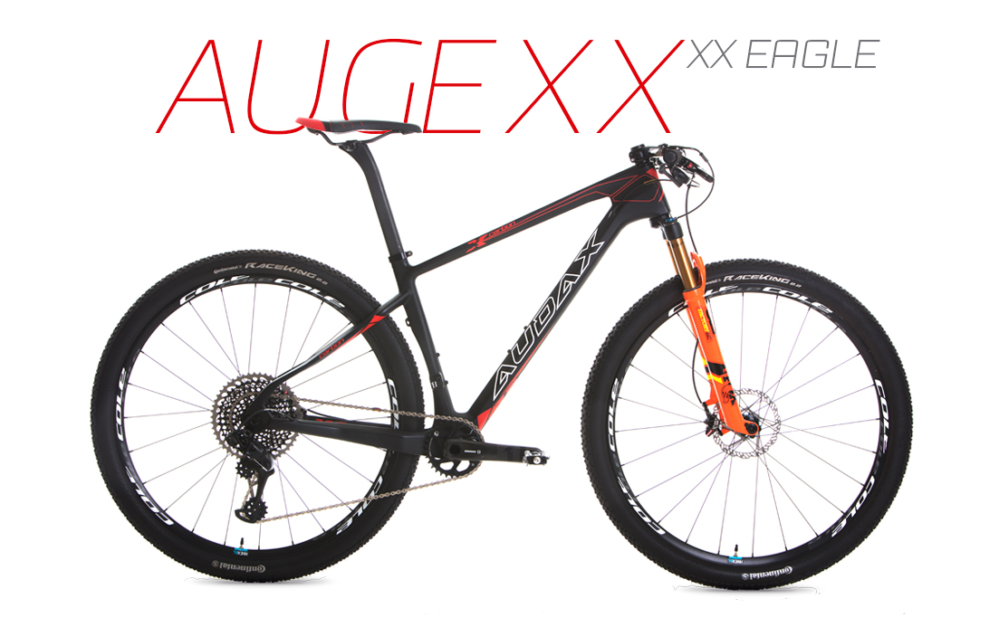 AUGE XX CARBON - XX1 Eagle <small> usai </small>