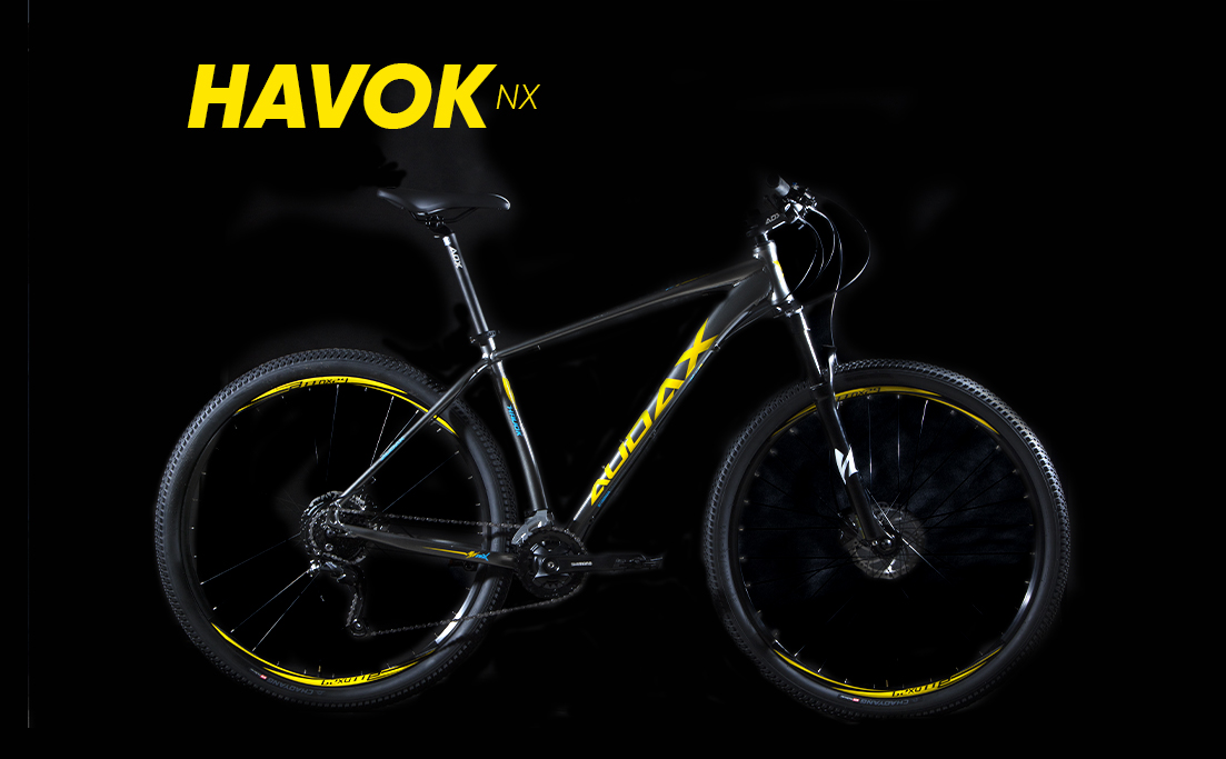 HAVOK NX