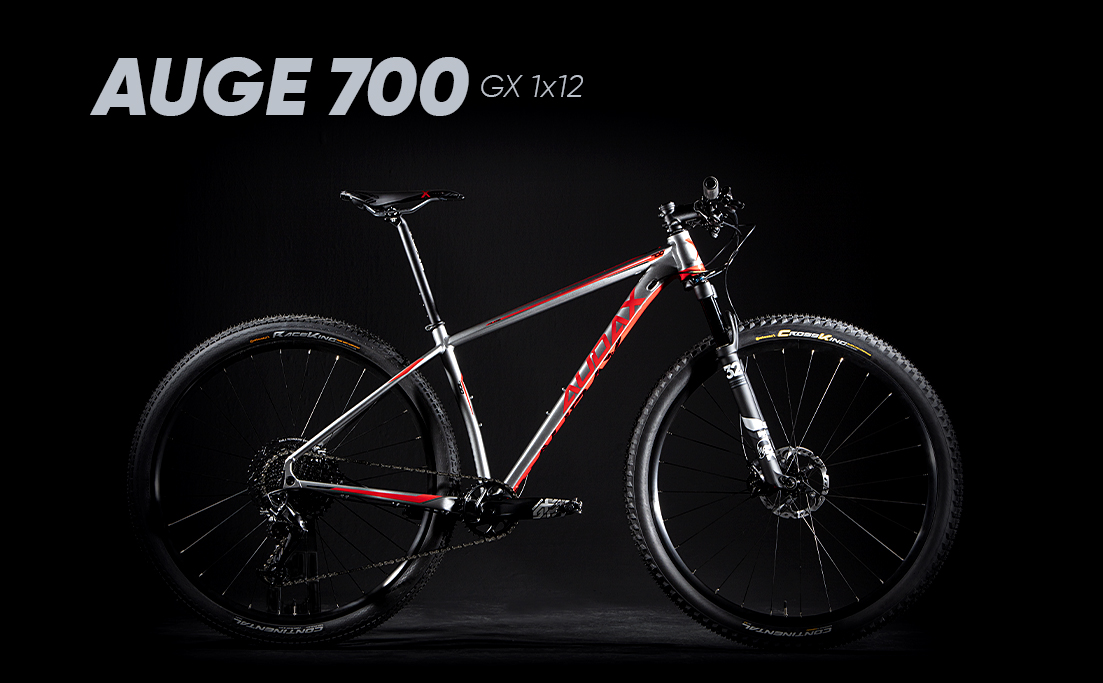 Auge 700 GX 1x12